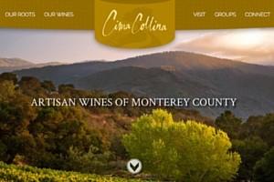 Vin65 Portfolio - Cima Collina