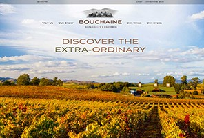Vin65 Portfolio - Bouchaine Vineyards