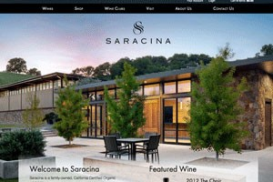 Vin65 Portfolio - Saracina Vineyards