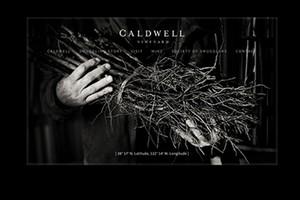 Vin65 Portfolio - Caldwell Vineyard