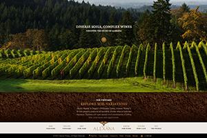 Vin65 Portfolio - Alexana Winery - Store