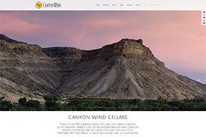 Vin65 Portfolio - Canyon Wind Cellars