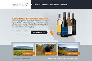 Vin65 Portfolio - District 7