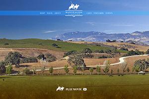 Vin65 Portfolio - Happy Canyon Vineyard