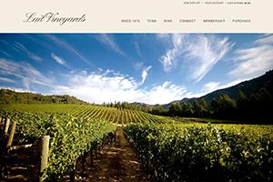 Vin65 Portfolio - Lail Vineyards