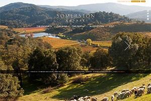 Vin65 Portfolio - Somerston Estate