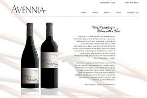 Vin65 Portfolio - Avennia