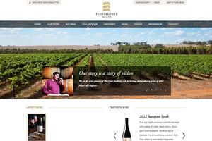 Vin65 Portfolio - Plantagenet Wines