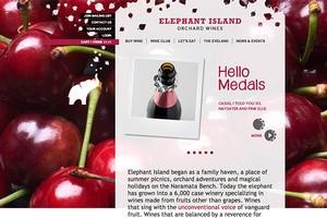 Vin65 Portfolio - Elephant Island Orchard Wines