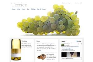 Vin65 Portfolio - Terrien Wines