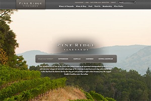 Vin65 Portfolio - Pine Ridge Vineyards